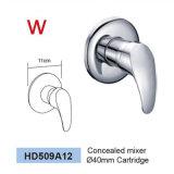 Filigrane reconnu dans le robinet en laiton de douche de salle de bains de mur (HD521)