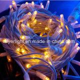LED de gros feux de chaîne de plein air commerciale