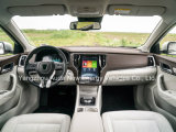 Comfortabele Aandrijving 5 van hoge Prestaties de Elektrische Auto van Zetels