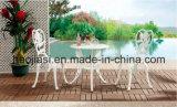 /Rattan ao ar livre/cadeira & tabela do alumínio de molde da mobília hotel do jardim/Patio/ajustou-se (&HS 6110DT do HS 3180C)