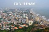 O transporte marítimo de Manon encontra serviço de logística de Guangzhou para Vitenam