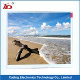 7 ``800*480 TFT Bildschirmanzeige-Baugruppe LCD mit Fingerspitzentablett