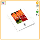 Libro obbligatorio perfetto pieno di colore A4 della stampa (OEM-GL026)