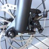 bicicleta eléctrica del neumático gordo de 48V 1000W en 7 velocidades con el ayudante del pedal