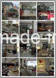 놓이는 새로운 디자인 및 최신 판매 가죽 소파 (SBL-9811)