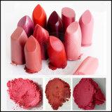 La mica sicura dell'orlo all'ingrosso colora la polvere, fabbrica naturale del pigmento del rossetto