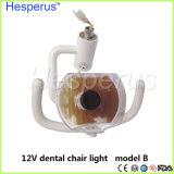 Lâmpada dentária Exmination por via oral Via oral a luz da unidade de medicina dentária
