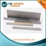 Desgaste - placas resistentes del carburo de tungsteno