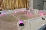 Gecko Outdoor Whirlpool SPA Pool met TV en het Systeem van de Muziek