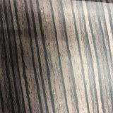 Matéria-prima de couro de cortiça ecológica de design especial para sapato (HS-M177)