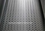 Kundenspezifisches anodisiertes Aluminiumstrangpresßling-Streifen-Blatt durch das Lochen