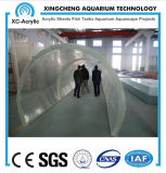 Lange AcrylTunnel in het Aquarium met Transparant AcrylComité