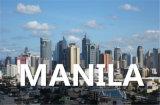 Fret maritime Le transport maritime de la logistique de Qingdao à Manille au sud