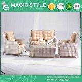 Sofà del patio con il sofà stabilito di svago del sofà del rattan 2-Seat di combinazione dell'ammortizzatore del sofà esterno stabilito di vimini del sofà per l'hotel (stile magico)