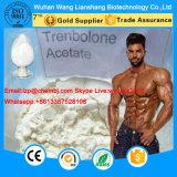 Acetato potente CAS 10161-34-9 di Trenbolone dello steroide anabolico per Bodybuilding