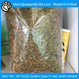 High Nutrition Dried Mealworms for Poultry Feed in Tub