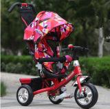 セリウムの公認の赤ん坊の三輪車は販売のためのTrikeの三輪車をからかう
