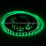 Striscia del chip 60LEDs 14.4W DC12V LED di colore verde IP65 SMD5050 di buona qualità