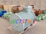 gerador de turbina do vento de 400VAC 60rpm 60kw/gerador ímã permanente