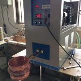 抗癌性のテスト大学実験室の使用のNanoparticleの誘導電気加熱炉(JLCG-6)