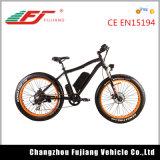 E-Bicyclette à la mode d'homologation de la CE de montagne