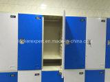 Entreposage en en plastique casier d'ABS de structure de coup
