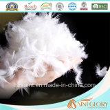 Pato branco do Comforter por atacado da pena para baixo e Duvet da pena