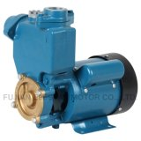 A pressão interna da bomba de água (PS130)