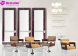 شعبيّة [هيغقوليتي] صالون أثاث لازم مرآة حل صالون كرسي تثبيت ([ب2046])