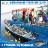 水産養殖の養魚場、ナマズの繁殖の純ケージ
