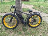 Gros E-Vélo approuvé de la montagne En15194 avec le MI moteur d'entraînement