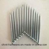 중국에 있는 고품질 철사 못 또는 일반적인 철사 못 또는 철강선 못 제조자