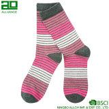 Las mujeres de alta calidad visten calcetines de encargo