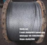 7/3.05mm, 7/3.45mm, 7/4.0mm, 19/1.8mm, 19/2.3mm. O fio de aço galvanizado irrecuperáveis (GSW)