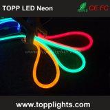 Colore flessibile che cambia il tubo al neon del LED per l'applicazione esterna