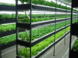 Vasos de silicone LED impermeável crescer a barra de luz