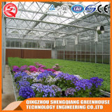الصين زراعة حد يليّن [غرين هووس] زجاجيّة