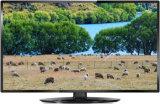 32 affichage à cristaux liquides original TV (32L61F) de panneau d'atterrisseur de l'hôtel OEM/ODM de pouce