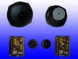 HiFi-luidsprekersysteem voor in de auto (F602)