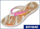Flip Flop (E0184C)