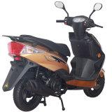 Проведение Sanyou Группы 125 см -150 cc Азии рынка скутер Zy