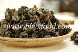 L'oreille de bois déshydraté champignon noir
