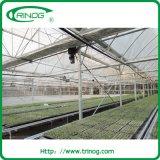 Maison verte tropicale pour l'agriculture