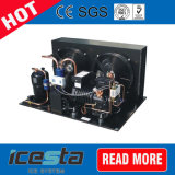 De Condenserende Eenheden van de Compressor van Copeland Bij lage temperatuur voor Verkoop