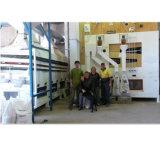 Planta de tratamiento de la limpieza del germen de la cebada del trigo de 10 toneladas/hora