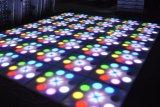 Der Hochzeits-Stadium DJ-Beleuchtung-DMX Blume Dance Floor Steuerder blumen-60*60cm RGB LED