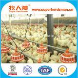 Matériel automatique d'aviculture de la vente 2015 chaude pour la Chambre de poulet