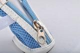 Il cane di animale domestico calza il rifornimento molle respirabile dell'animale domestico dei caricamenti del sistema del cucciolo delle calzature della maglia di estate antiscorrimento