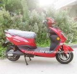 500W/800W/1000w/1200W Adulto City Motos Scooter Eléctrico (Novo foco)