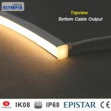 Striscia impermeabile professionale di illuminazione dell'acquario LED di IP68 3528SMD